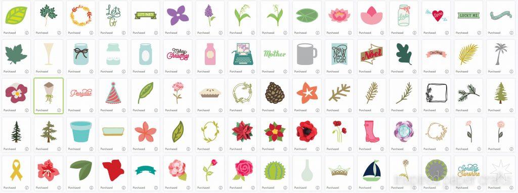 Cricut Flower Market Collection