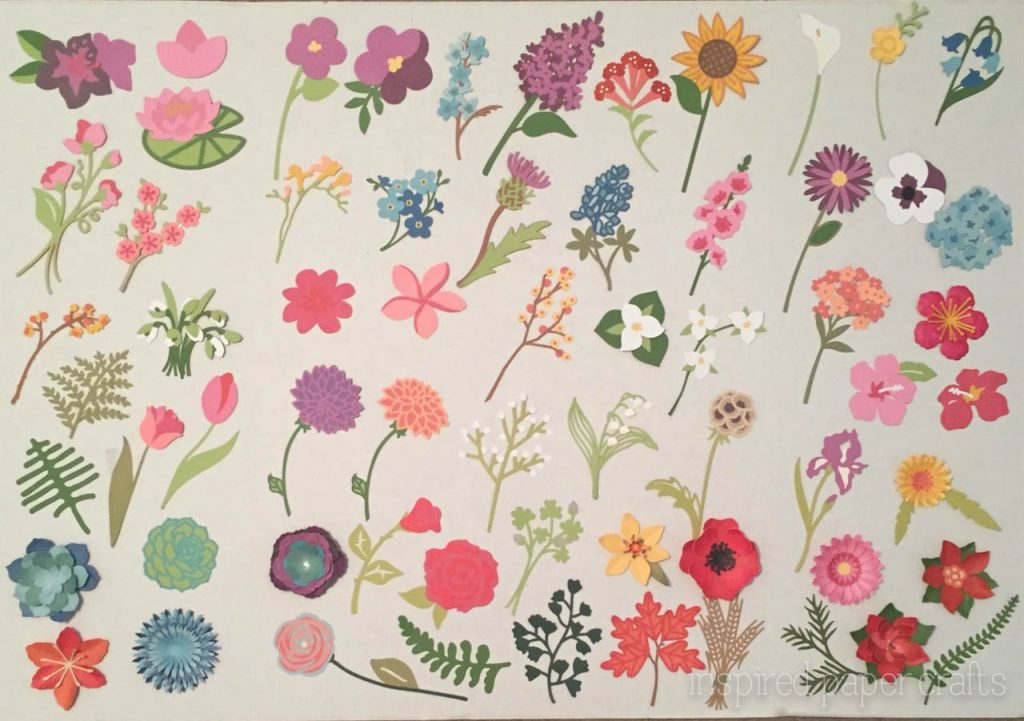 Featuring The Cricut Flower Market Cartridge Inspired Paper Crafts