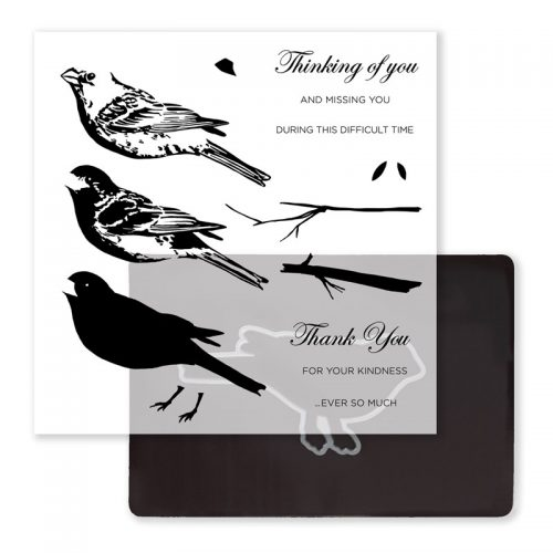 Thoughtful Bird Stamp + Thin Cuts Item Number- Z3377