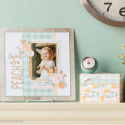 Introducing seasonal expressions volume 1 and the new for Home craft expressions decor